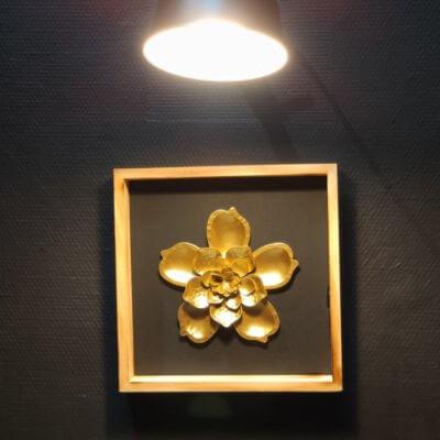 decoration-menuistore-valenciennes